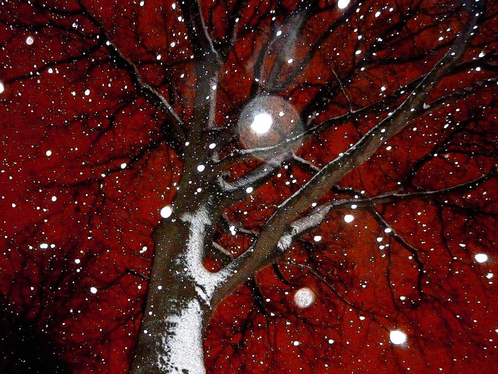 Foto van sneeuw tegen bloedrode hemel
